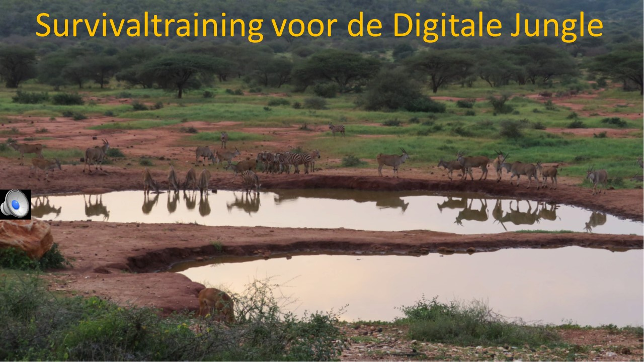 Survivaltraining voor de Digitale Jungle